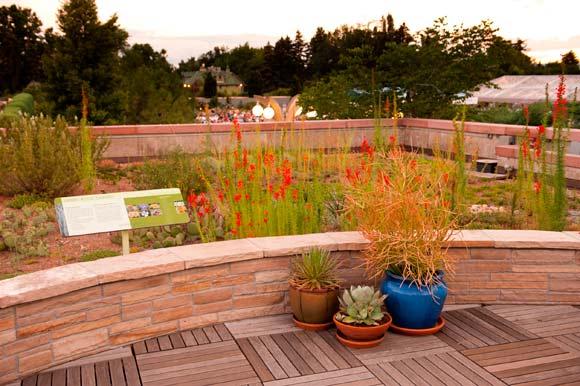 The Denver Botanic Garden's Green Roof Garden in 2011.