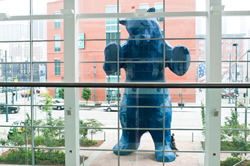"""I See What You Mean"" aka Blue Bear is a piece of public art at the Colorado Convention Center."