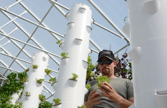 Evan Premer tends to greenhouse plants.