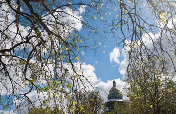 The golden dome of the Colorado State Capitol peeks out from blooming trees.