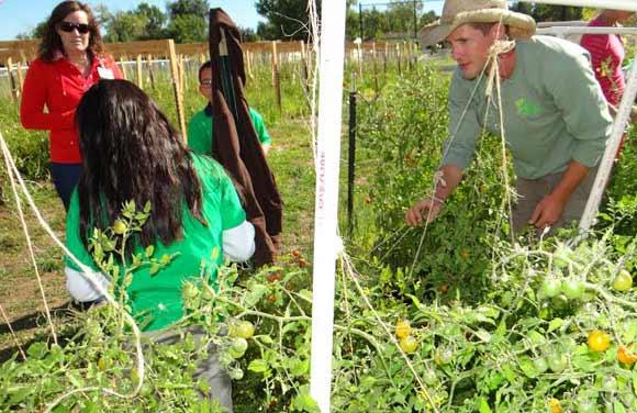 From dc to denver gardens revitalize schools - Douglas gardens elementary school ...