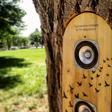Sound totems have been installed in the trunks of trees in southwest Denver's Athmar Park; McDonough Park on the north side of the city; and Boyd Park in Park Hill.