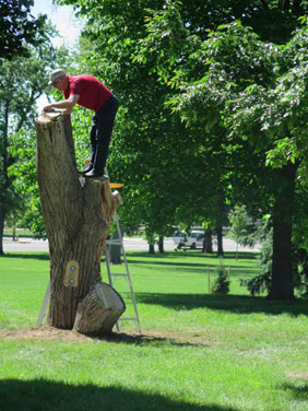 Early in the planning process, Pike and Dodds faced a major logistical challenge: a city ordinance that prohibits attaching anything to a live tree.