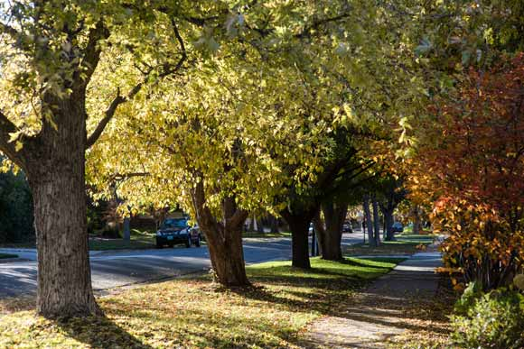At 3,021 acres, Park Hill is Denver's largest original neighborhoods.