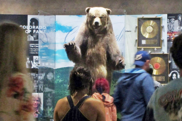 This bear in the Red Rocks Visitor Center is not the one that tried to sneak into a concert.