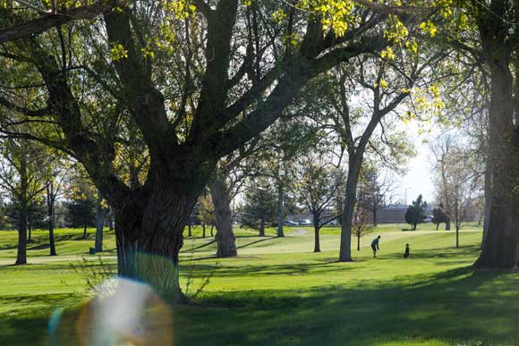 Historic Overland Golf Course could be the site of a new music festival starting in 2018.